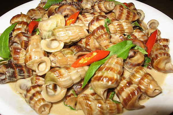 Fried-Sea-Snails-With-Chili-Sauce