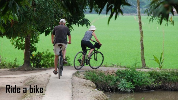Authentic Experience in Southern Vietnam-5