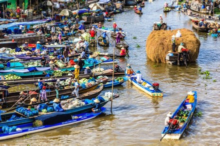 mekong-delta-tour-3-days-2