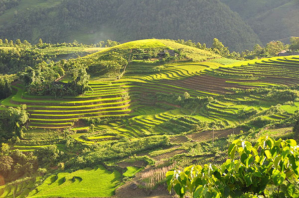 Sapa Trekking 2 Days Tour (5)