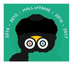 logo tripadvisor 2