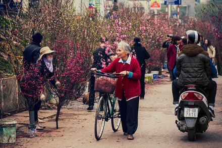 quang ba flower market tet holiday